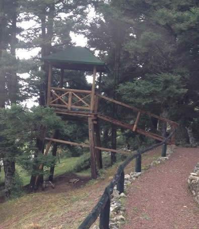 Δενδρόσπιτο-ησυχαστήριο από ξυλεία καστανιάς στην ορεινή Φωκίδα.